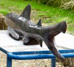 Requin de granite