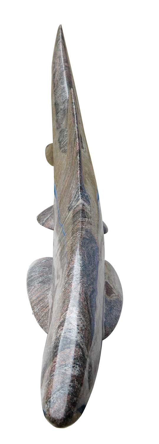Requin granite 1